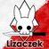 Lizaczek