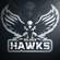 SilverHawk619