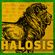 Headquarter of HALOSIS