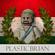 PlasticBrian