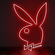 Red Bunny.