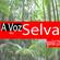A Voz da Selva